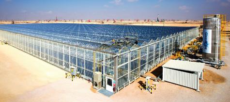 Glasspoint Pilot Plant