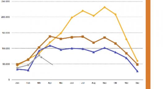 Germany: Uncertain Market Development in 2011