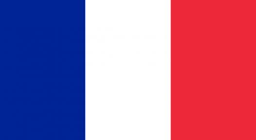 France: Restructuring SAED