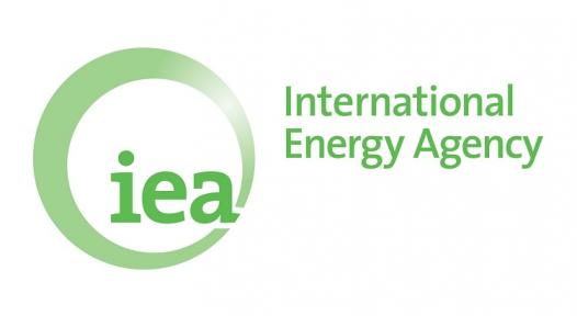 """IEA Study: """"Renewable energy for heat deserves greater attention"""""""