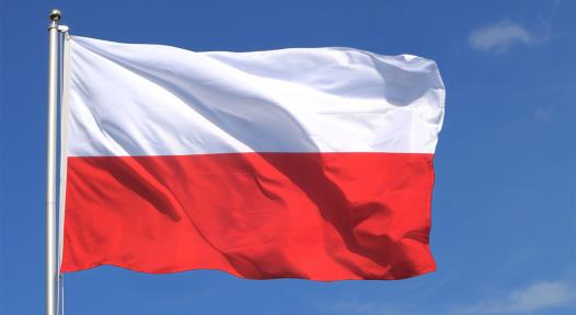 Poland: Market in Transition