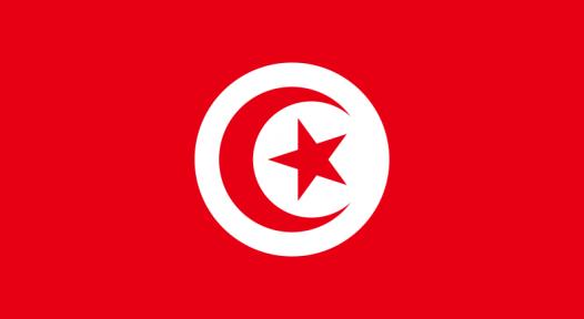 Tunisian Market Growing Rapidly